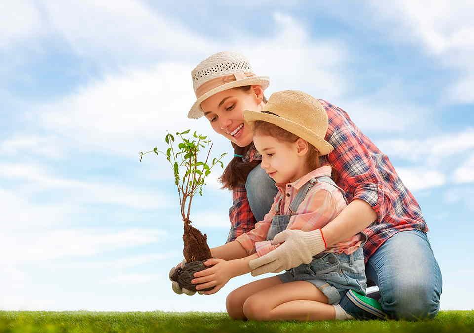 10 consejos para cuidar el medio ambiente desde casa